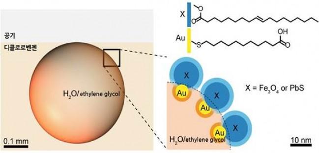 액체방울을 둘러싼 나노 계면활성제는 나노입자로 만들었다. 연구팀은 금(Au)에 친수성 분자를 붙인 친수성 나노입자(노랑)와, 산화철(Fe3O4) 혹은 황화납(PbS)에 소수성 분자를 붙인 소수성 나노입자(파랑)를 결합했다. - IBS 제공